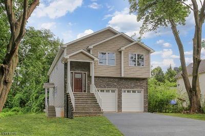 Edison Twp. Single Family Home For Sale: 11 Green St