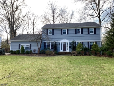 Florham Park Boro Single Family Home For Sale: 57 Sherbrooke Dr