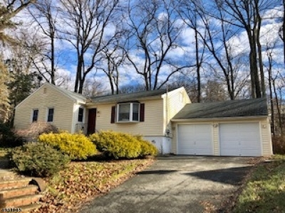 Roxbury Twp. Single Family Home For Sale: 540 Ogden Rd