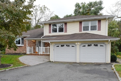 East Hanover Twp. Single Family Home For Sale: 17 Angela Ct