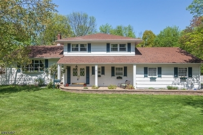 New Providence Boro Single Family Home For Sale: 47 Penwood Dr