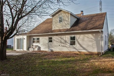 Edison Twp. Single Family Home For Sale: 16 Roxy Ave