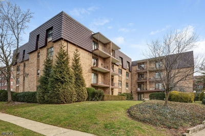 Cranford Twp. Condo/Townhouse For Sale: 22 Riverside Dr-Apt C10 #C-10