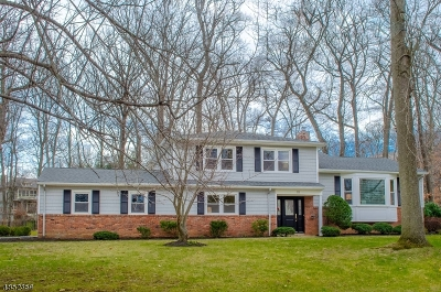 New Providence Boro Single Family Home For Sale: 111 Candlewood Dr