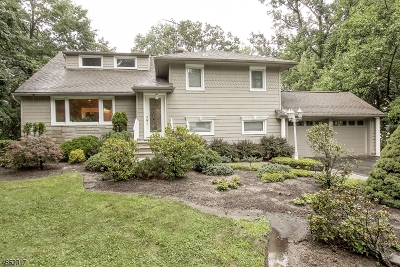Livingston Twp. Single Family Home For Sale: 25 Orchard Ln