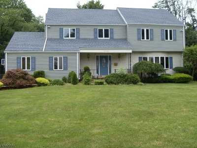 Mountainside Boro NJ Rental For Rent: $4,500 (For Rent)
