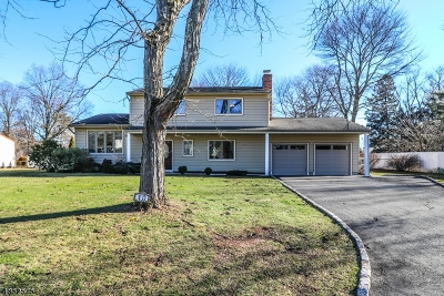 Edison Twp. Single Family Home For Sale: 10 Phillip Dr