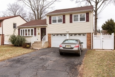 Plainfield City Single Family Home For Sale: 919-23 Maltby Ave
