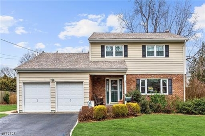 Woodbridge Twp. Single Family Home For Sale: 23 Bell Ave