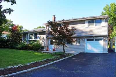 Springfield Twp. Single Family Home For Sale: 207 Milltown Rd