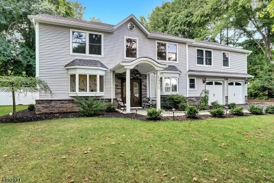 Scotch Plains Twp. Single Family Home For Sale: 1871 Raritan Rd