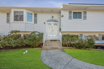 East Brunswick Twp. Single Family Home For Sale: 9 Parsons Rd