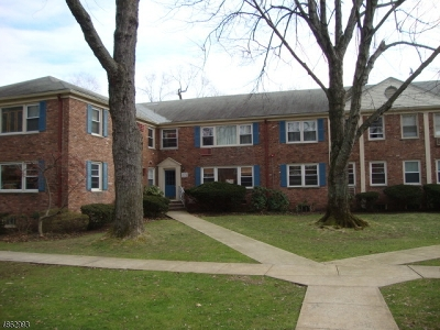 West Orange Twp. Condo/Townhouse For Sale: 24 Hutton Ave #15