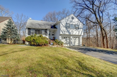 Maplewood Twp. Single Family Home For Sale: 14 Maplewood Ave