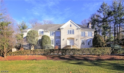 WATCHUNG Single Family Home For Sale: 100 Hill Hollow Rd