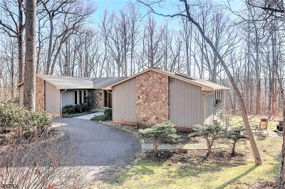 WATCHUNG Single Family Home For Sale: 430 Phillip Ln