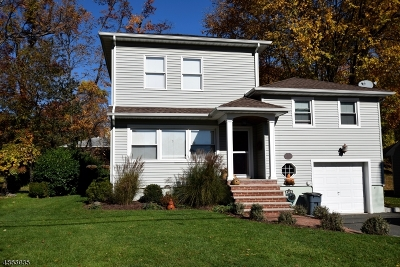 Springfield Twp. Single Family Home For Sale: 166 Hawthorne Ave