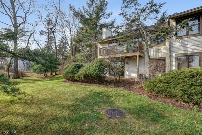 South Orange Village Twp. Condo/Townhouse For Sale: 321 Wyoming Ave C2d #2D