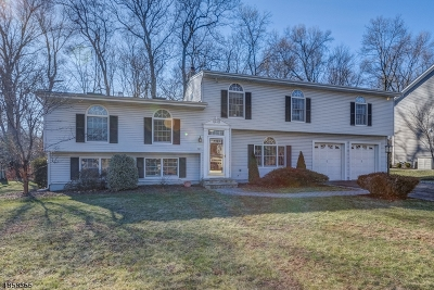 Florham Park Boro Single Family Home For Sale: 121 Edgewood Dr