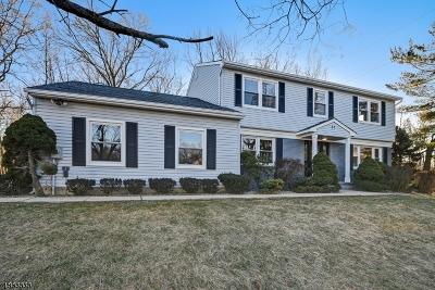 Edison Twp. Single Family Home For Sale: 23 Visco Dr
