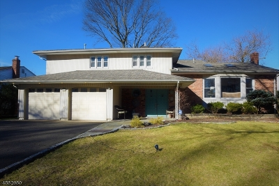 Springfield Twp. Single Family Home For Sale: 39 Smithfield Dr