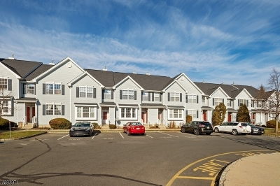 South Brunswick Twp. Condo/Townhouse For Sale: 206 Blossom Cir