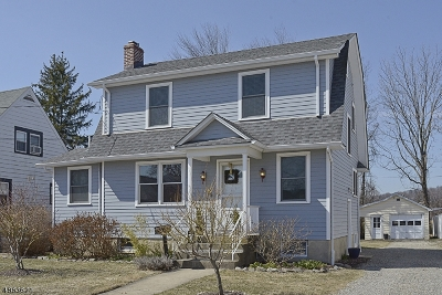 Boonton Town Single Family Home For Sale: 165 Kanouse St
