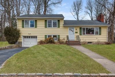 Millburn Twp. Single Family Home For Sale: 22 Dameo Pl