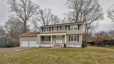 Hanover Twp. Single Family Home For Sale: 17 Juniper Dr