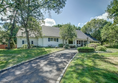 Springfield Twp. Single Family Home For Sale: 76 Tree Top Dr