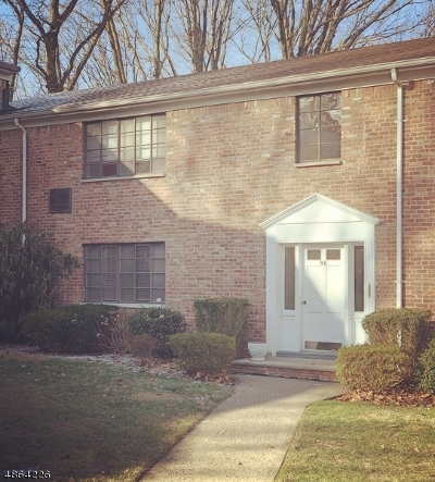 Springfield Twp. Rental For Rent: 86 Troy Drive #B