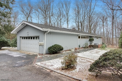 New Providence Boro Single Family Home For Sale: 115 Division Ave