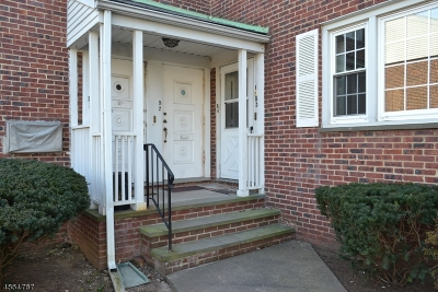 Springfield Twp. Condo/Townhouse For Sale: 445 Morris Ave 3-B