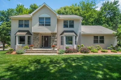 Parsippany-Troy Hills Twp. Single Family Home For Sale: 7 Worcester Ct