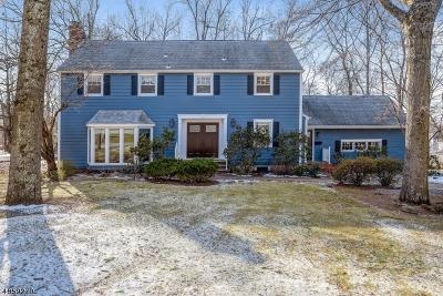 Livingston Twp. Single Family Home For Sale: 4 Langtree Dr