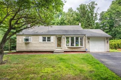 Randolph Twp. Single Family Home For Sale: 176a Park Ave