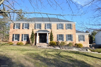 Florham Park Boro Single Family Home For Sale: 5 Driftway