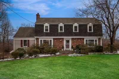 Chatham Twp. Single Family Home For Sale: 29 Huron Dr