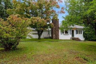 Randolph Twp. Single Family Home For Sale: 250 Center Grove Rd