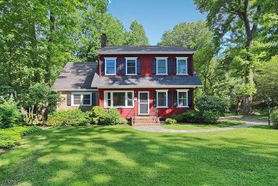 Mountainside Boro Single Family Home For Sale: 875 Hillside Ave