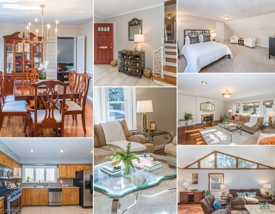 Millburn Twp. Single Family Home For Sale: 193 Parsonage Hill Rd