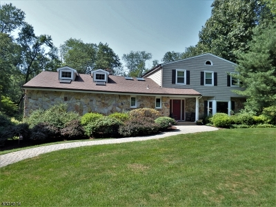 Denville Twp. Single Family Home For Sale: 3 Running Brook Ct