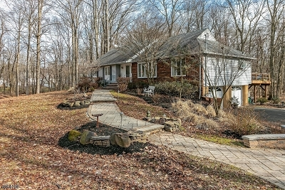 Scotch Plains Twp. Single Family Home For Sale: 1110 Clarks Ln