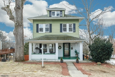 Boonton Town Single Family Home For Sale: 316 Pine St