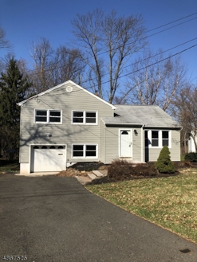 New Providence Boro Single Family Home For Sale: 101 Woodland Rd