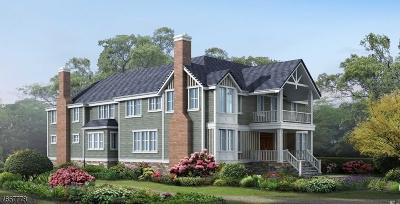 Millburn Twp. Single Family Home For Sale: 67c Montview Ave