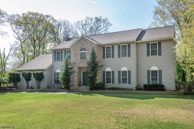 Randolph Twp. Single Family Home For Sale: 11 Oak Ln