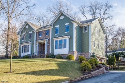 Chatham Twp. Single Family Home For Sale: 31 Mountainview Rd