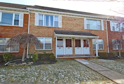 Scotch Plains Twp. Condo/Townhouse For Sale: 1035 Cellar Ave