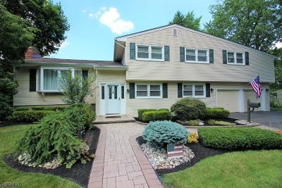 East Brunswick Twp. Single Family Home For Sale: 36 Inwood Dr